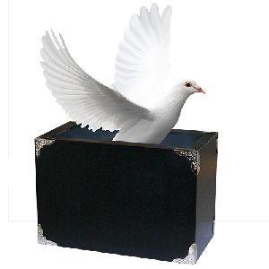 Tora Fire and Dove Box